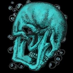 Schädel von hinten (Zeichnung: urian)